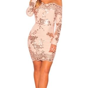Beige Lace Sequined dress